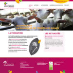 Accompagnement en communication de la Fondation Xavier Bernard